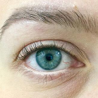 Silmä, ruskea sisärajaus